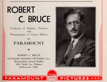 1931filmdailyyear