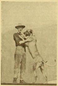 Robert C. Bruce and Love