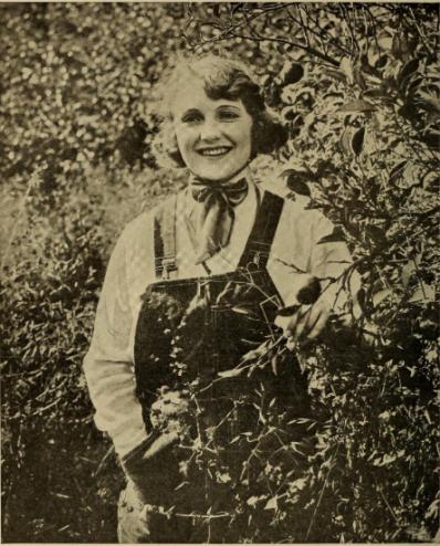 Doris Pawn, 1917