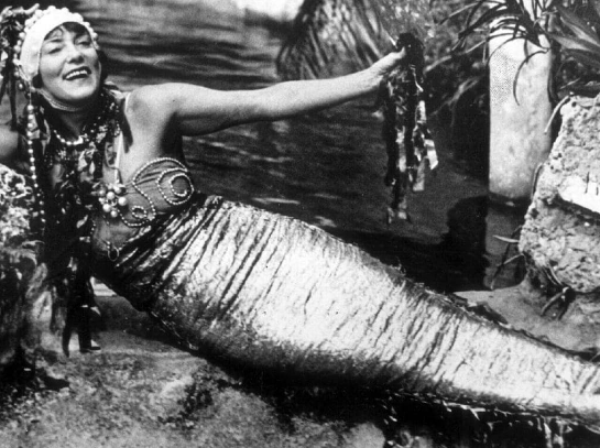 The Australian Mermaid